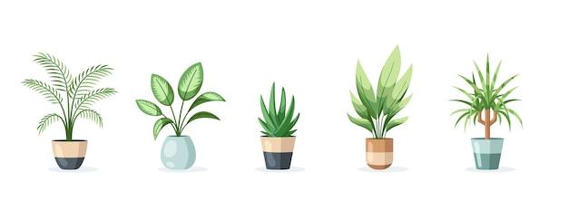 Set di piante domestiche in vaso isolato su sfondo bianco in stile piatto