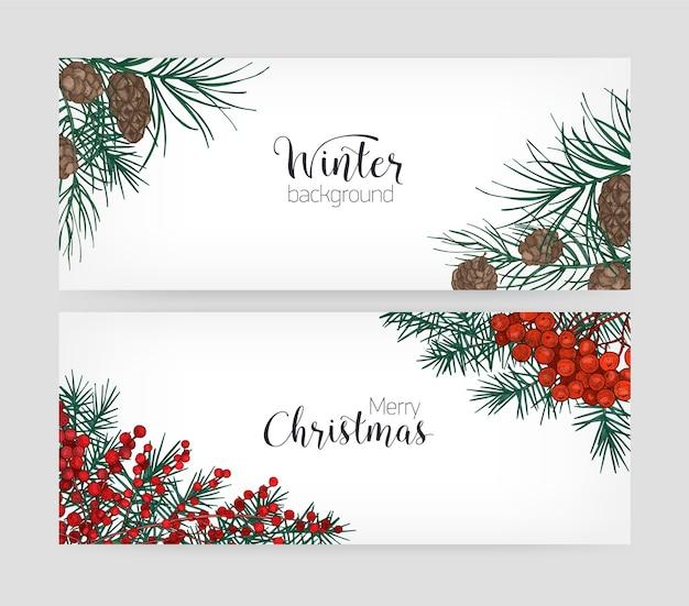 Set di banner vacanza orizzontale con rami di pino, coni, bacche di agrifoglio su bianco