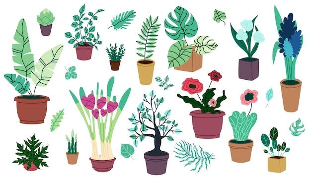 Set di piante da appartamento in vaso in design cartoon cartoon