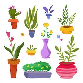 Una serie di piante da interno in vaso ficus cactus rose ecc. per la decorazione d'interni e il negozio botanico