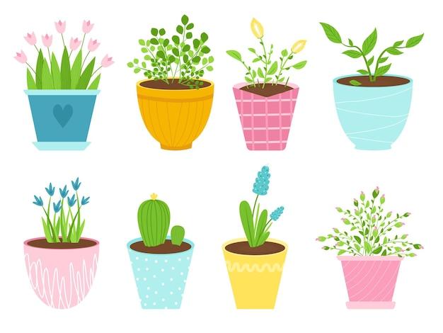 Set di immagini isolate di fiori per interni in vasi di ceramica. piante in una varietà di contenitori. illustrazione vettoriale.