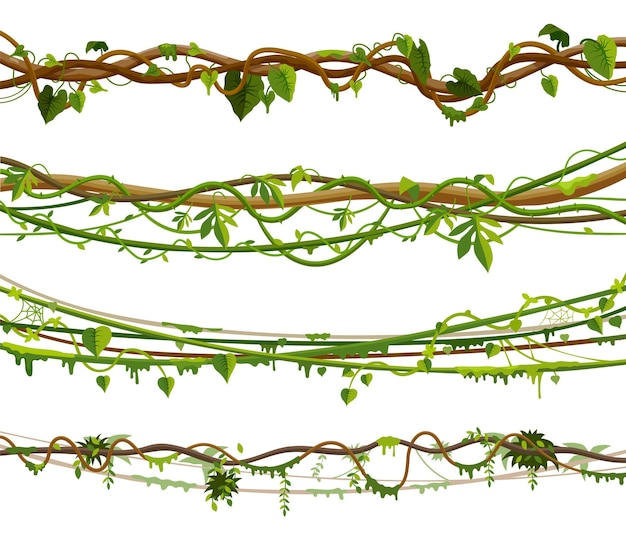 Set di viti della giungla o illustrazione di pianta di liana contorta Vettore Premium