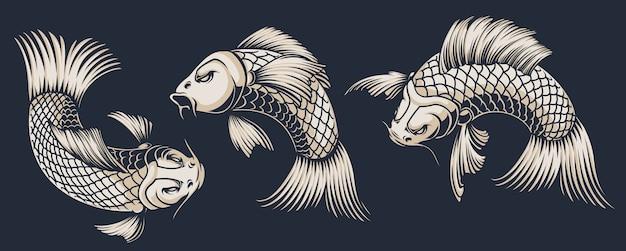 Serie di illustrazioni di carpe koi su sfondo scuro. tutte le illustrazioni sono in gruppi separati.