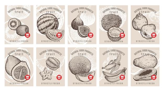 Set di etichette con vari frutti e bacche con iscrizioni