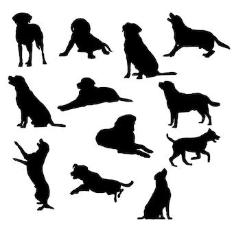 Insieme dell'illustrazione eps10 di vettore della siluetta del documentalista di labrador