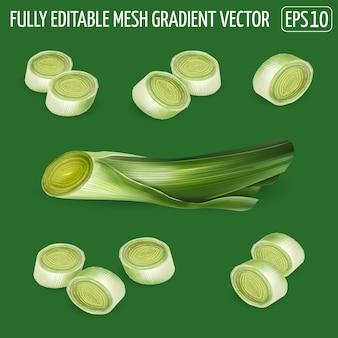 Set di composizioni di fette di porro - disegno di verdure fresche. illustrazione realistica.