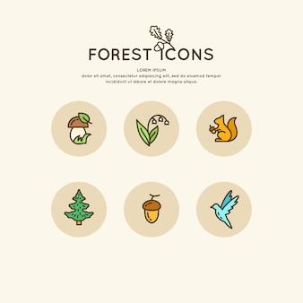 Il set di foresta lineare di icone e illustrazioni. animali e piante vettoriali