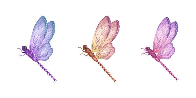 Set di bella collezione di libellule dipinte a mano ad acquerello