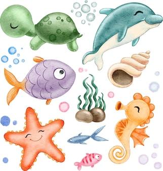 Set di tartarughe marine delfino pesce stelle marine cavalluccio marino pietre alghe isolate su bianco