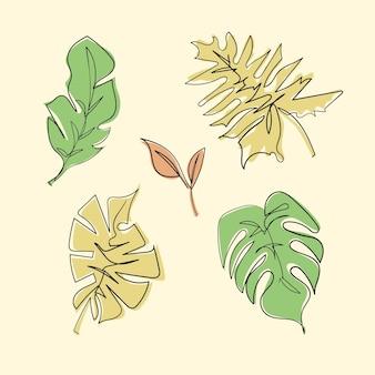 Set di foglie di monstera nel vettore di contorno