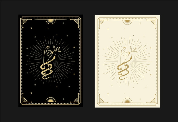 Set di carte dei tarocchi mistici simboli scarabocchi alchemici incisione di stelle fiori serpenti e cristalli