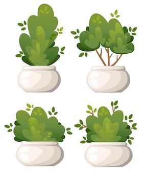 Set di cespugli naturali e alberi da giardino in vaso bianco per il cottage del parco e l'illustrazione del cortile sulla pagina del sito web di sfondo bianco e sull'app mobile