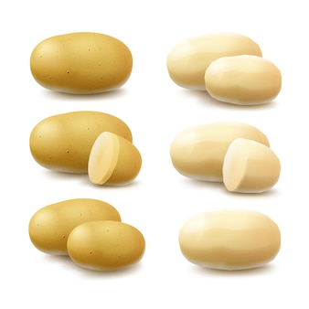 L'insieme di nuove patate non sbucciate e affettate sbucciate intere crude gialle si chiude su su fondo bianco