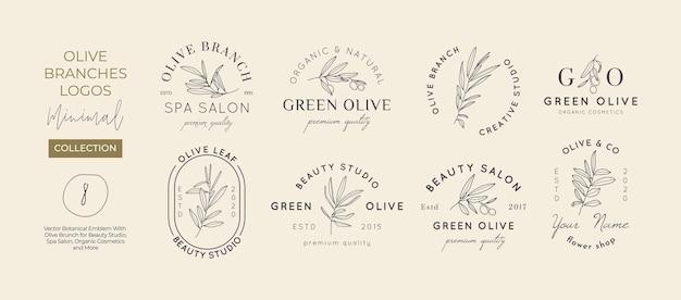 Set di rami d'ulivo con modello di progettazione di logo di foglie in stile lineare minimale semplice. segni vettoriali femminili astratti con illustrazione floreale per beauty studio, spa, cosmetici biologici, studio creativo