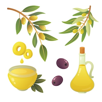 Impostare la frutta delle olive. bottiglia di olio d'oliva, ramo, albero e corona di rosmarino illustrazione.