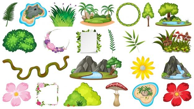 Set di piante ornamentali
