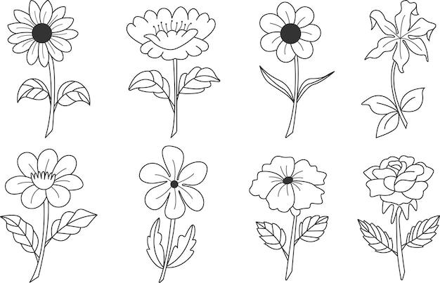 Impostare la collezione d'arte della linea di doodle di fiori botanici di contorno