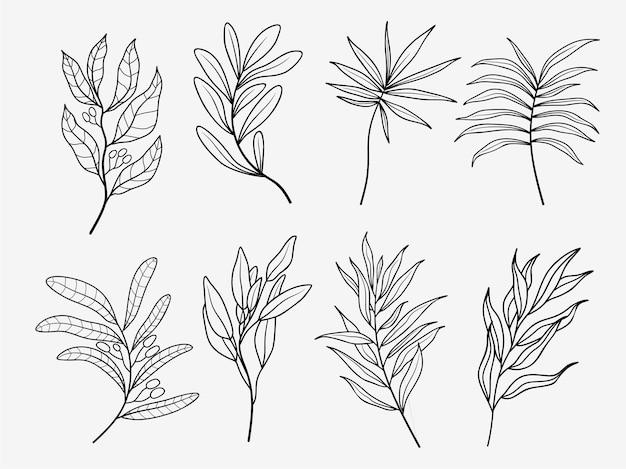 Set di foglie di palma