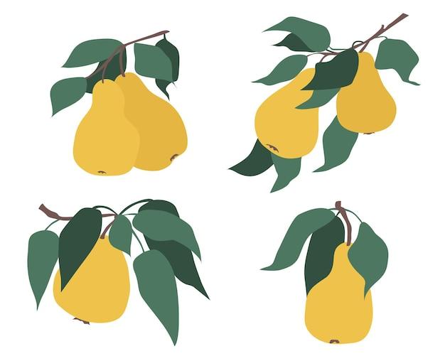 Set di pere su un ramo con foglie