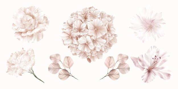 Set di fiori rosa di ortensie, rose e gigli