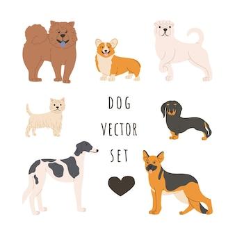 Set di cani di razza di varie razze. animali domestici in posizione eretta.