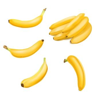 Set di banana realistica e mazzo di banane isolato.