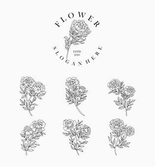 Set di fiori e foglie realistici