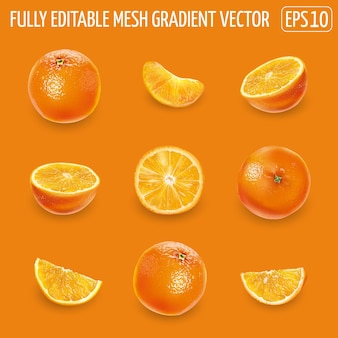 Set di arance mature - intere, metà e fette.