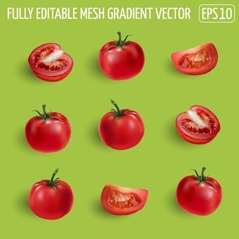 Set di pomodori rossi maturi - interi, metà e fetta. illustrazione realistica.