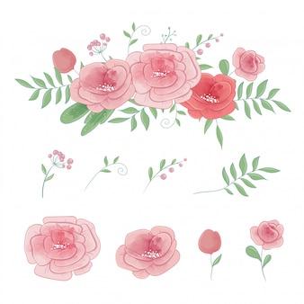 Set di rose e mazzi di fiori, vettore dell'acquerello