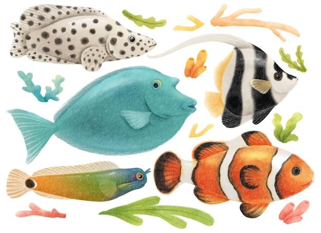 Set di acquerelli di pesci di mare dipinti a mano