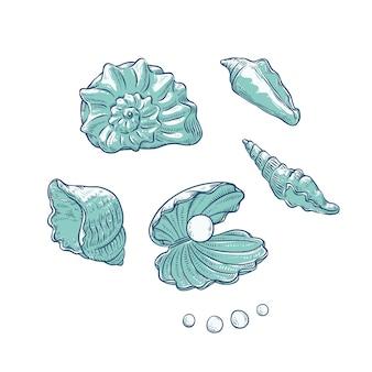 Impostare conchiglie e perle di diverse forme. illustrazione di schizzo di contorno monocromatico conchiglie di loghi di carte turistiche sul tema marino.