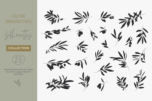 Un insieme di sagome di rami di ulivo isolato su uno sfondo chiaro in uno stile semplice. illustrazioni vettoriali di rami di ulivo con frutti e foglie per creare loghi, motivi e altro