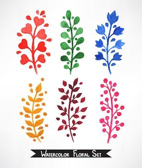 Set di sei graziose piante disegnate a mano ad acquerello