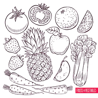 Set di schizzo di frutta e verdura. illustrazione disegnata a mano