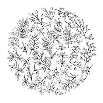 Set di schizzi e scarabocchi di linea disegnati a mano elementi floreali di design, fiori selvatici, piante disegnate a mano