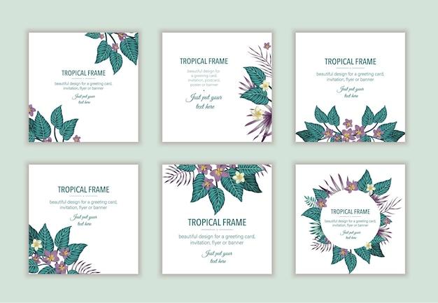 Set di modelli di cornice tropicale quadrata con foglie e fiori. collezione di design di carte esotiche