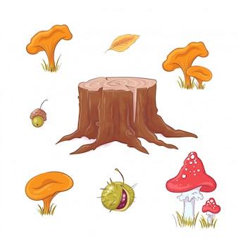 Situato nello stile del ceppo di foresta disegno a mano, funghi e bacche, autunno e foglie.