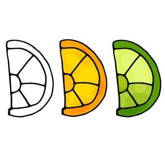 Impostare la frutta estiva cibo vegano sano illustrazione del fumetto con fette di agrumi colorate su bianco