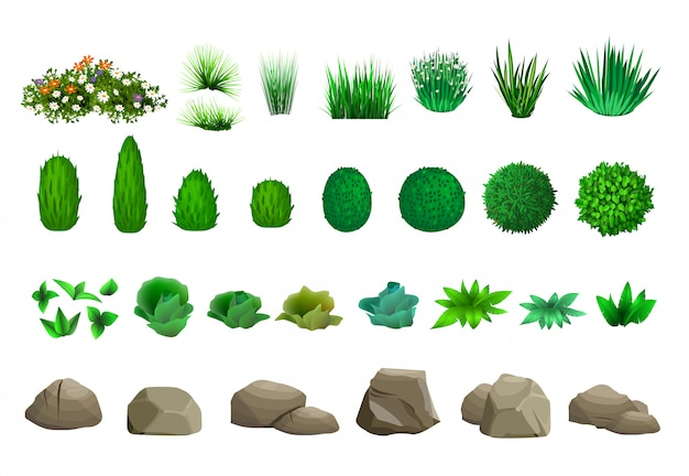 Insieme di alberi cespugli e pietre