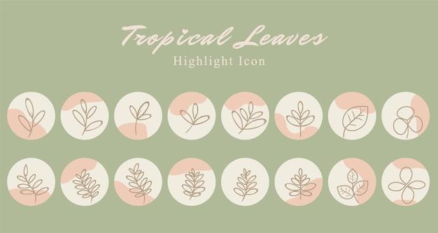 Set di icone botaniche di foglie tropicali sui social media evidenziano il modello di storia in sfondo rosa pesca