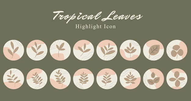 Set di icone botaniche di foglie tropicali sui social media evidenziano il modello di storia in colore rosa pesca