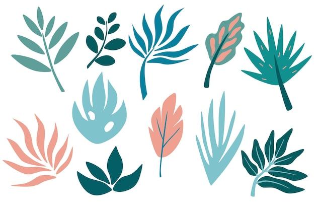 Set di foglia tropicale, verde, foglie, ramoscello, ramo. elementi grafici botanici disegnati a mano. collezione con piante per invito. illustrazione decorativa botanica vettoriale