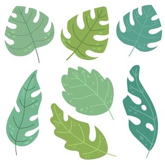 Set di foglie tropicali isolati vettoriali disegnati a mano