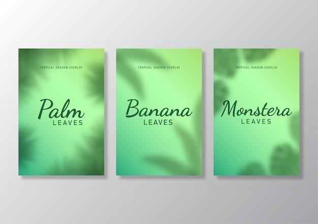 Set di foglie tropicali poster ombra sovrapposizione sfondo illustrazione vettoriale