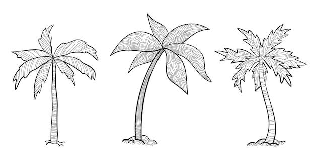 Impostare palme tropicali con foglie. stile schizzo