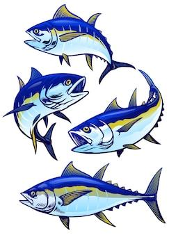 Set di tonno in versione colori