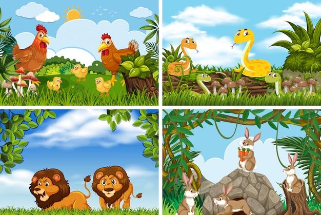 Insieme di vari animali in scene di natura