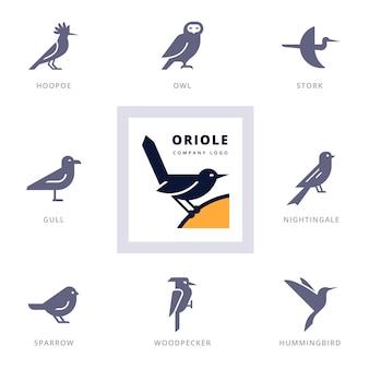 Insieme di vari elementi di design del logo e dell'icona dell'uccello per l'azienda. icone della raccolta con gli uccelli.