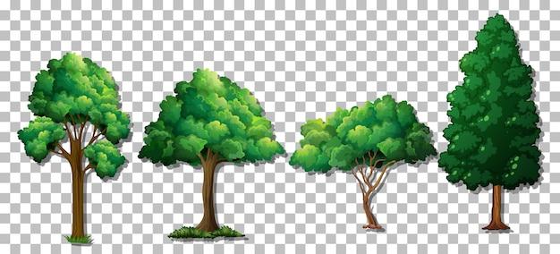 Insieme di vari alberi su sfondo trasparente